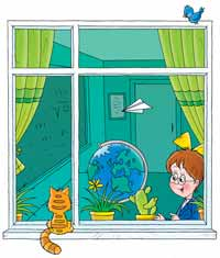 window kitten